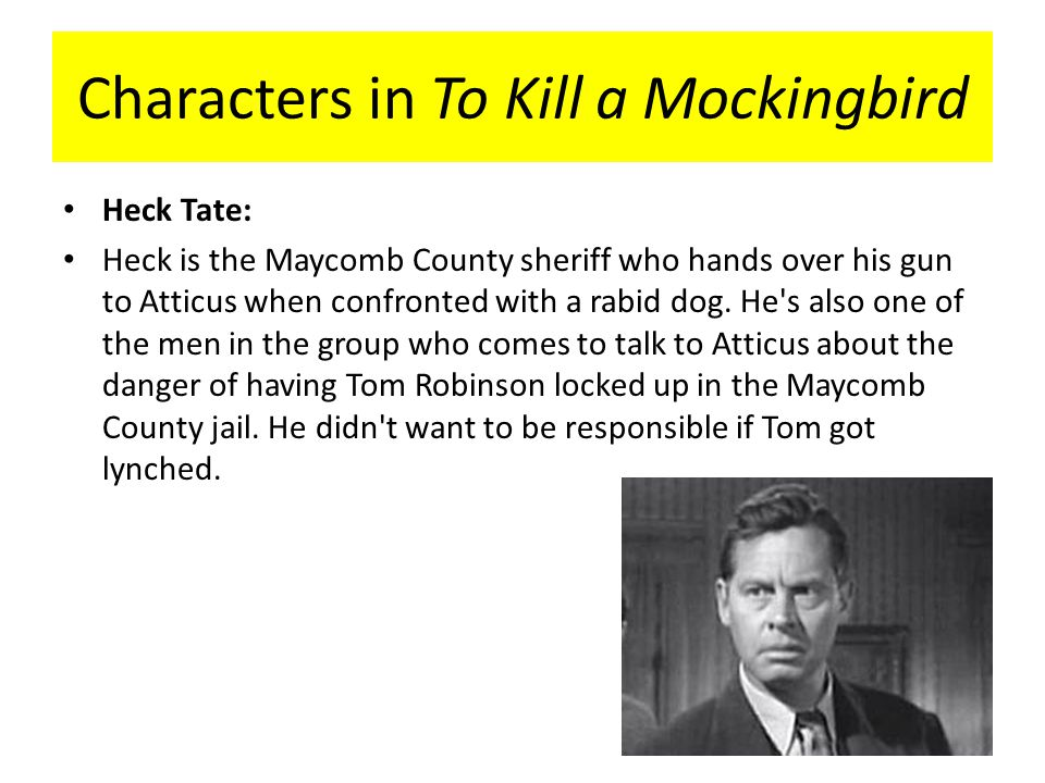 mockingbird characters kill mockingbird