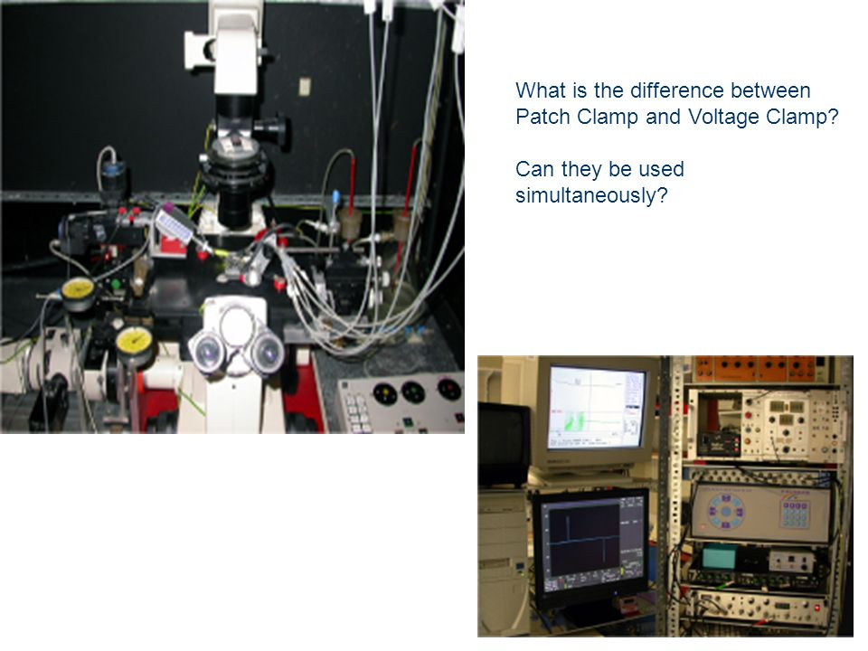 What is the difference between Patch Clamp and Voltage Clamp Can they be used simultaneously