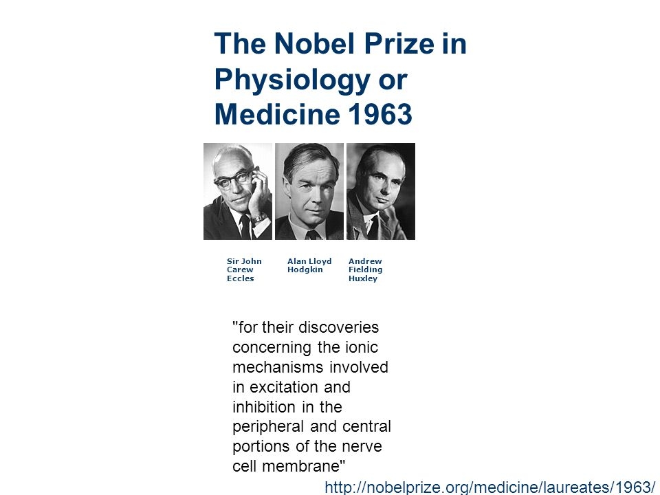 Sir John Carew Eccles Alan Lloyd Hodgkin Andrew Fielding Huxley The Nobel Prize in Physiology or Medicine 1963 for their discoveries concerning the ionic mechanisms involved in excitation and inhibition in the peripheral and central portions of the nerve cell membrane