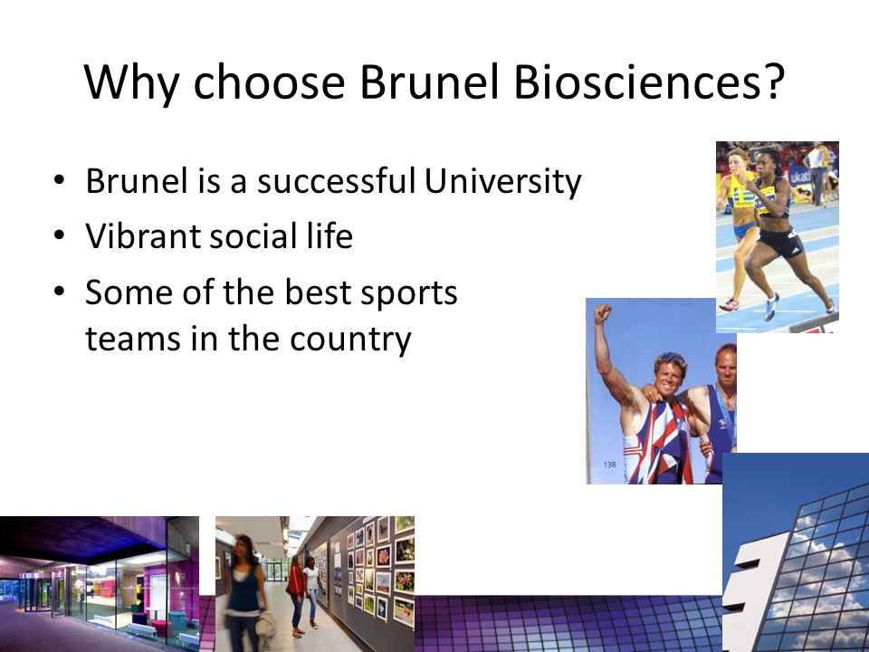 Why choose Brunel Biosciences.