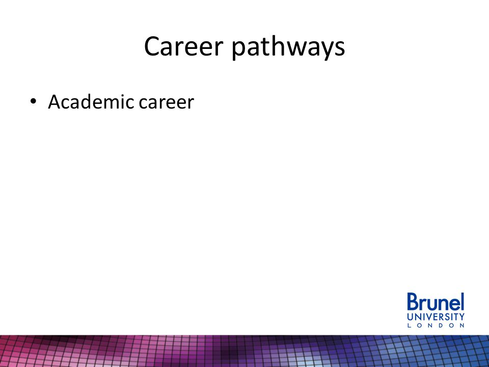 Career pathways Academic career
