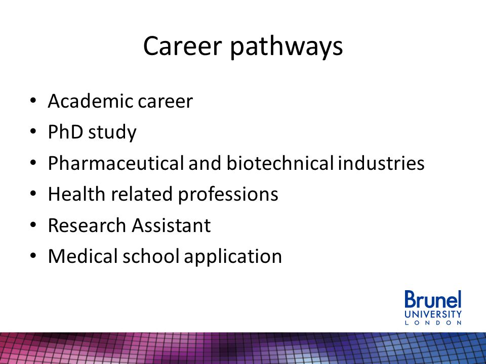 Career pathways Academic career PhD study Pharmaceutical and biotechnical industries Health related professions Research Assistant Medical school application