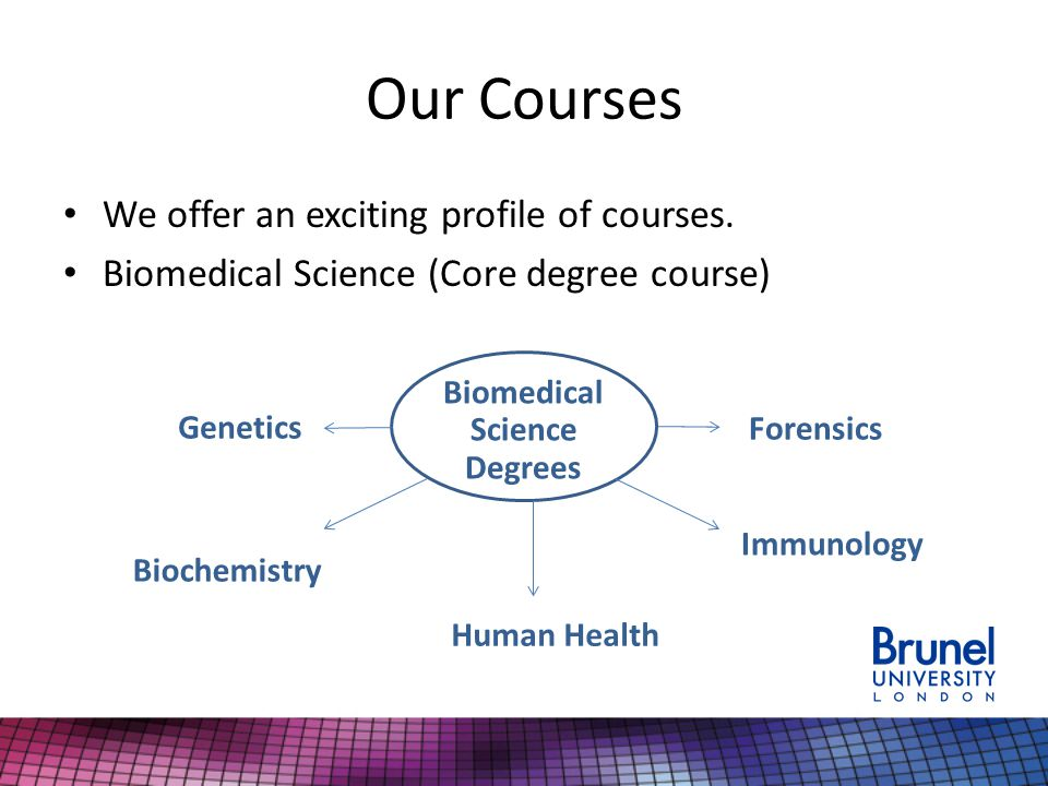 Our Courses We offer an exciting profile of courses.