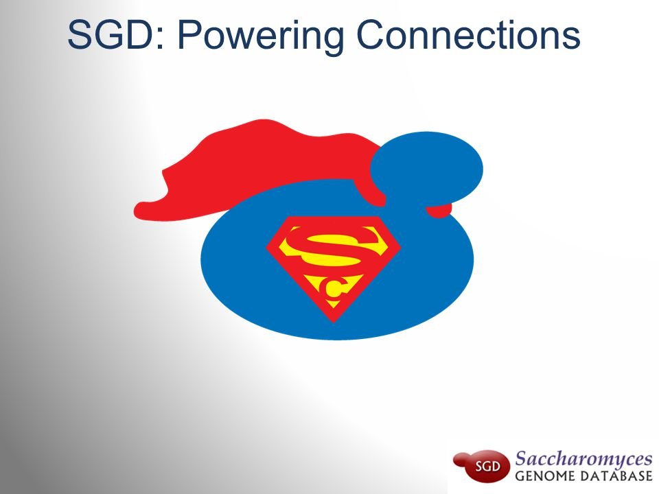 SGD: Powering Connections
