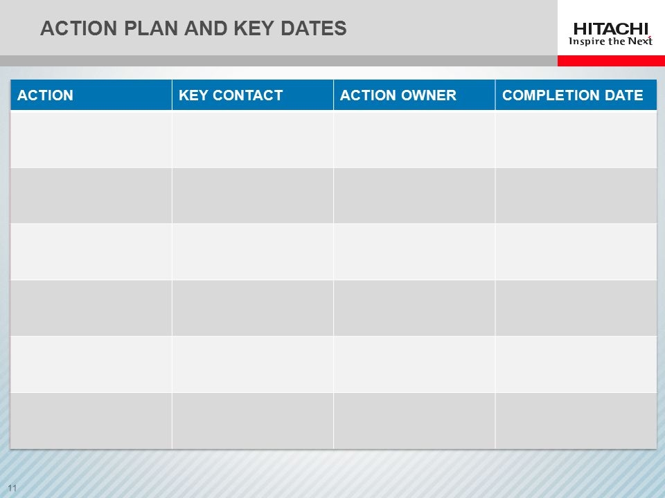 11 ACTION PLAN AND KEY DATES
