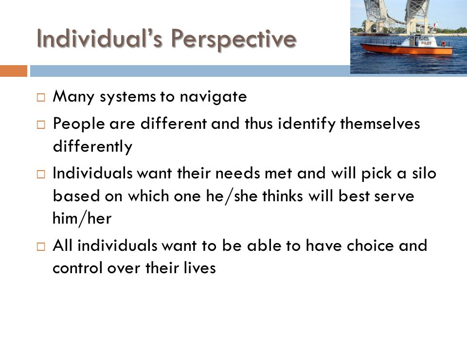 Individual's Perspective  Many systems to navigate  People are different and thus identify themselves differently  Individuals want their needs met and will pick a silo based on which one he/she thinks will best serve him/her  All individuals want to be able to have choice and control over their lives