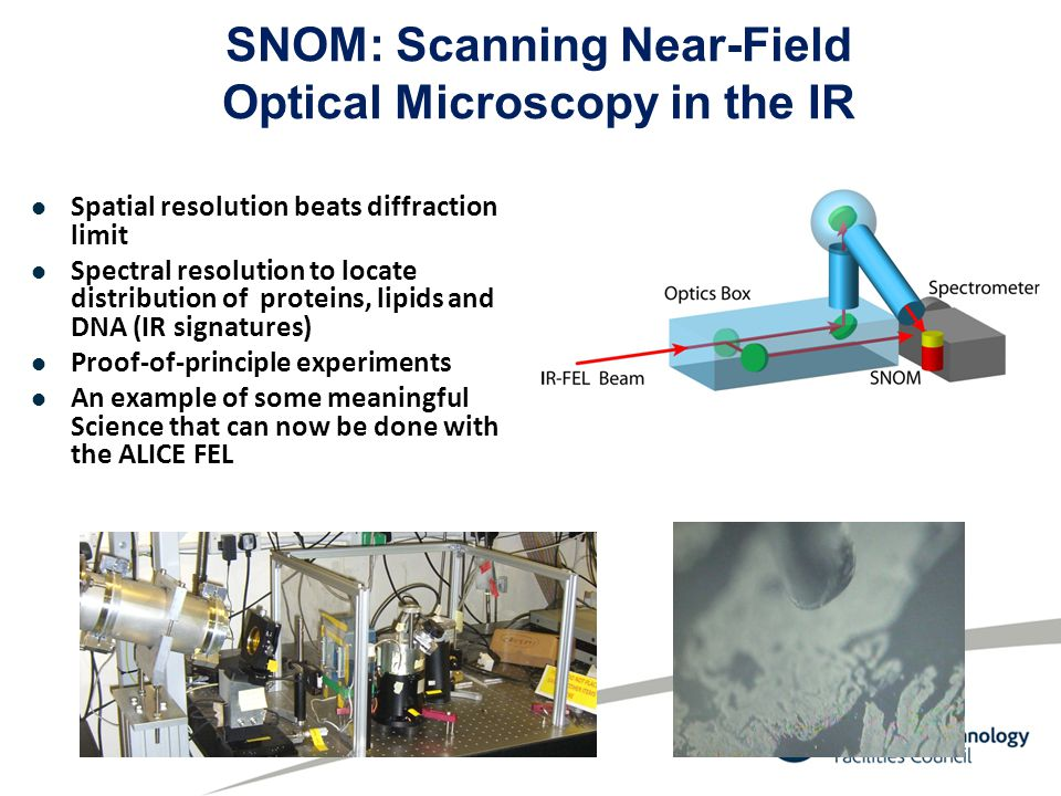 SNOM: Scanning Near-Field Optical Microscopy in the IR Spatial resolution beats diffraction limit Spectral resolution to locate distribution of proteins, lipids and DNA (IR signatures) Proof-of-principle experiments An example of some meaningful Science that can now be done with the ALICE FEL