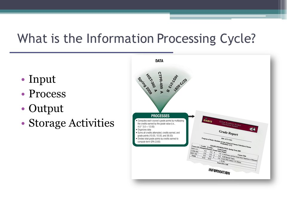 What is the Information Processing Cycle Input Process Output Storage Activities