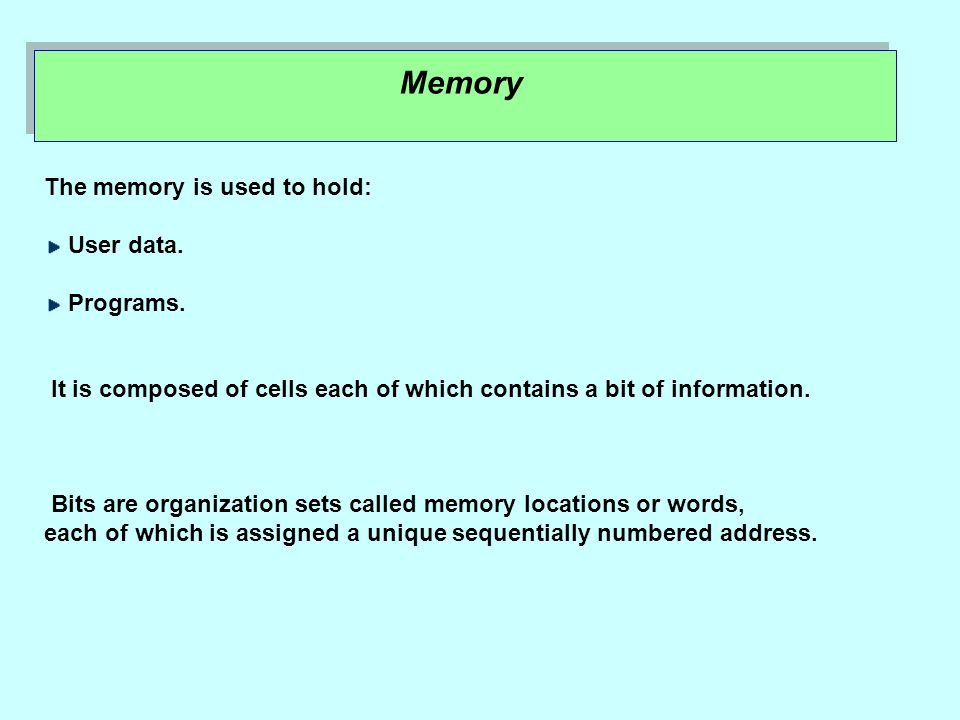 Memory The memory is used to hold: User data. Programs.