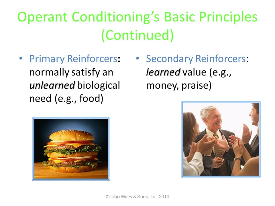 Operant Conditioning's Basic Principles (Continued) unlearned Primary Reinforcers: normally satisfy an unlearned biological need (e.g., food) learned Secondary Reinforcers: learned value (e.g., money, praise) ©John Wiley & Sons, Inc.