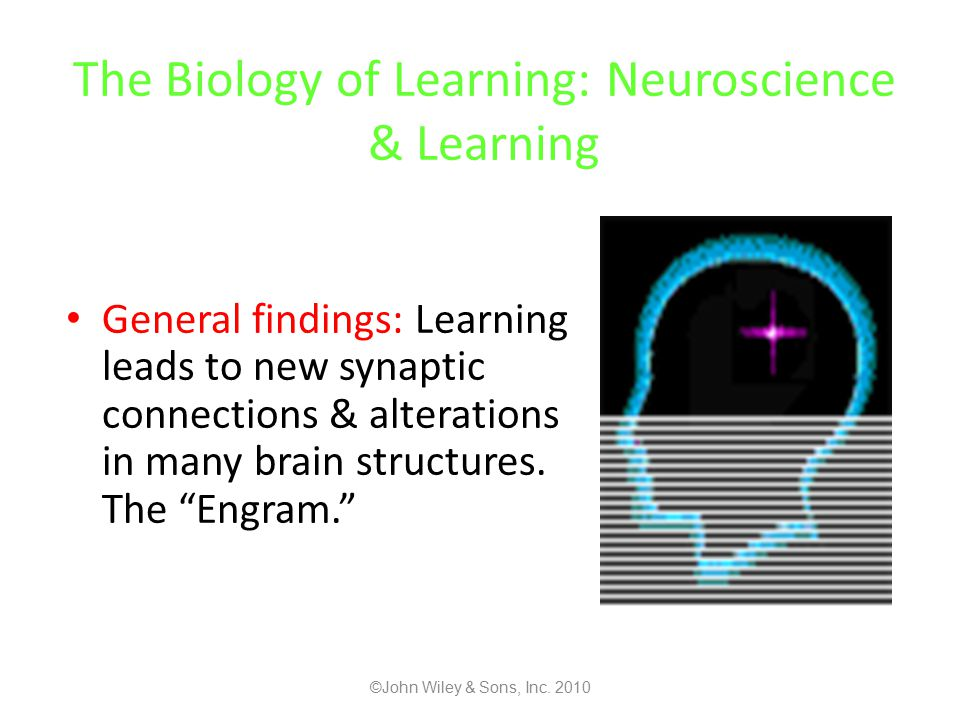 The Biology of Learning: Neuroscience & Learning General findings: Learning leads to new synaptic connections & alterations in many brain structures.