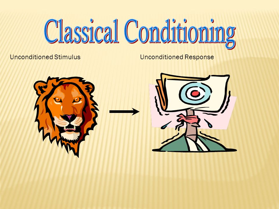  The Classical Conditioning paradigm  paradigm is a scientific word similar to using the word recipe in a kitchen, I.e., this is how you do it  UCS >UCR  NS >UCS >UCR  CS >CR  That's all there is to it