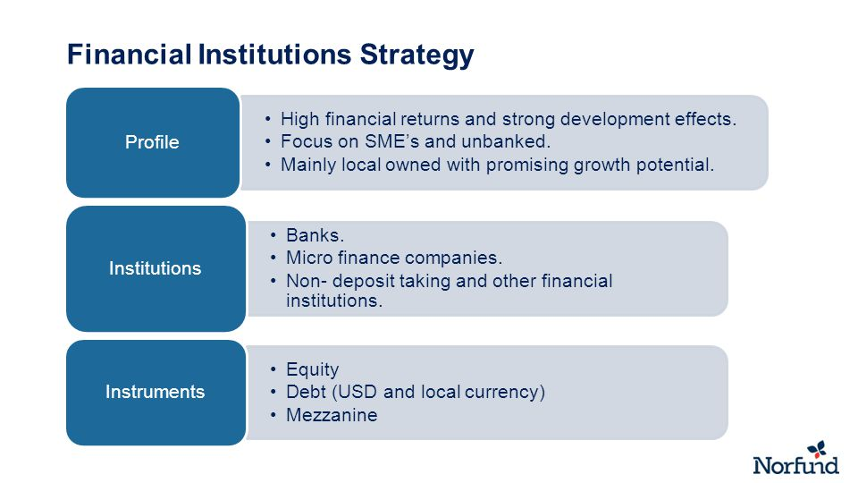 Financial Institutions Strategy High financial returns and strong development effects.