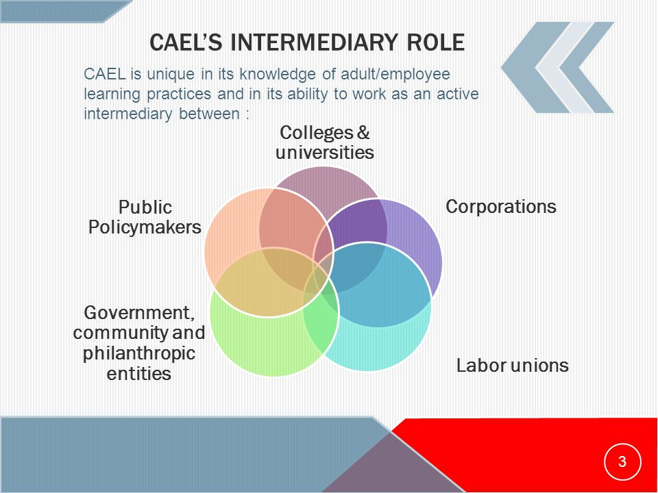 CAEL'S INTERMEDIARY ROLE Colleges & universities Corporations Labor unions Government, community and philanthropic entities Public Policymakers CAEL is unique in its knowledge of adult/employee learning practices and in its ability to work as an active intermediary between : 3