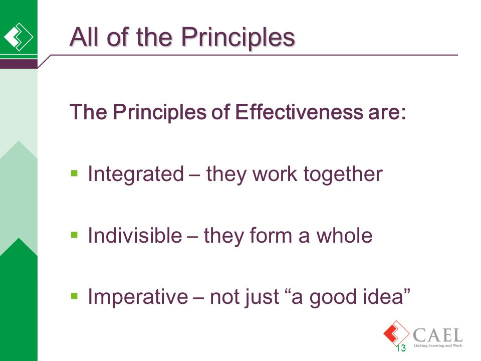 13 All of the Principles The Principles of Effectiveness are:  Integrated – they work together  Indivisible – they form a whole  Imperative – not just a good idea