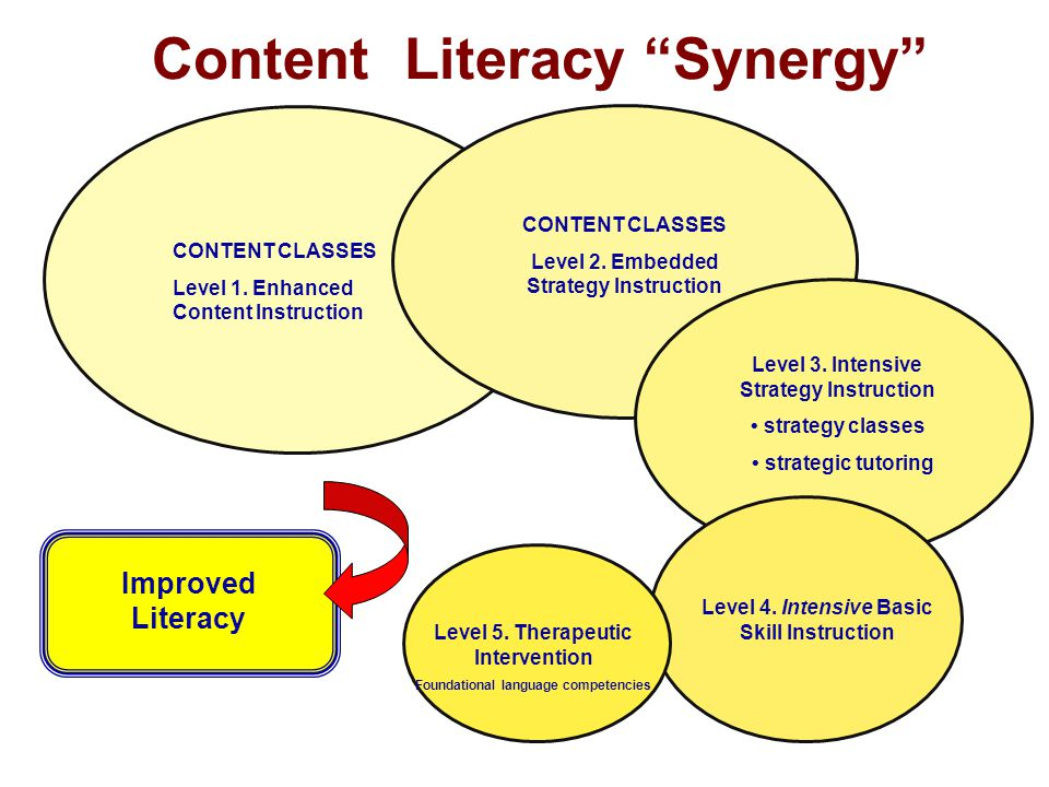 Content Literacy Synergy Improved Literacy CONTENT CLASSES Level 1.