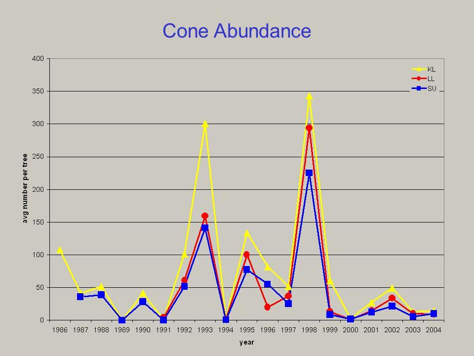 2 Cone Abundance