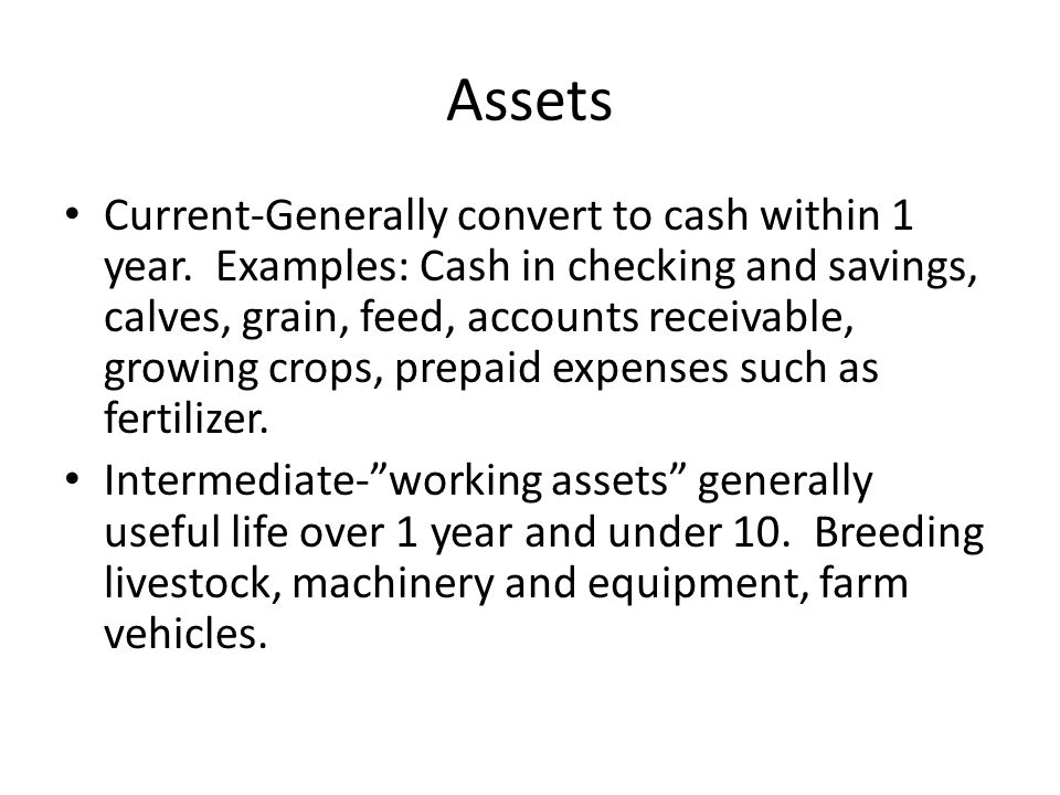 Assets Current-Generally convert to cash within 1 year.
