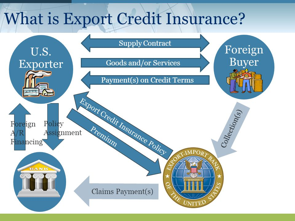 What is Export Credit Insurance.