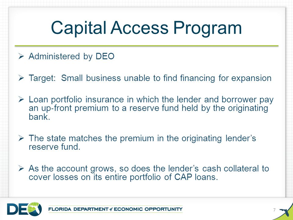 Capital Access Program  Administered by DEO  Target: Small business unable to find financing for expansion  Loan portfolio insurance in which the lender and borrower pay an up ‐ front premium to a reserve fund held by the originating bank.