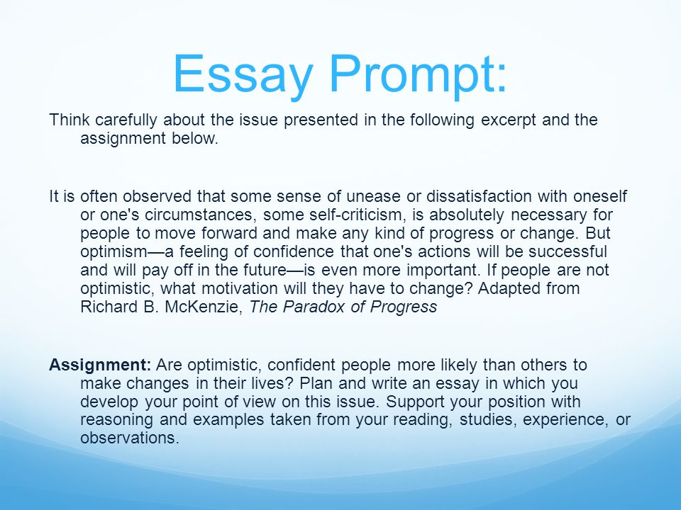 essay about social issue
