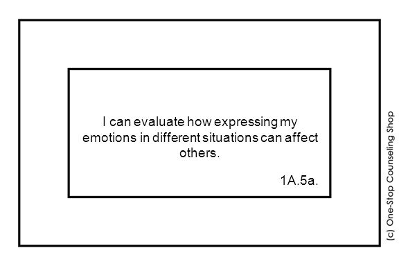 I can evaluate how expressing my emotions in different situations can affect others. 1A.5a.