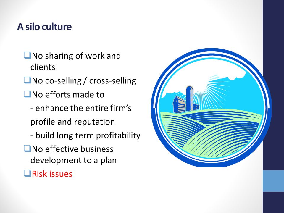 A silo culture  No sharing of work and clients  No co-selling / cross-selling  No efforts made to - enhance the entire firm's profile and reputation - build long term profitability  No effective business development to a plan  Risk issues