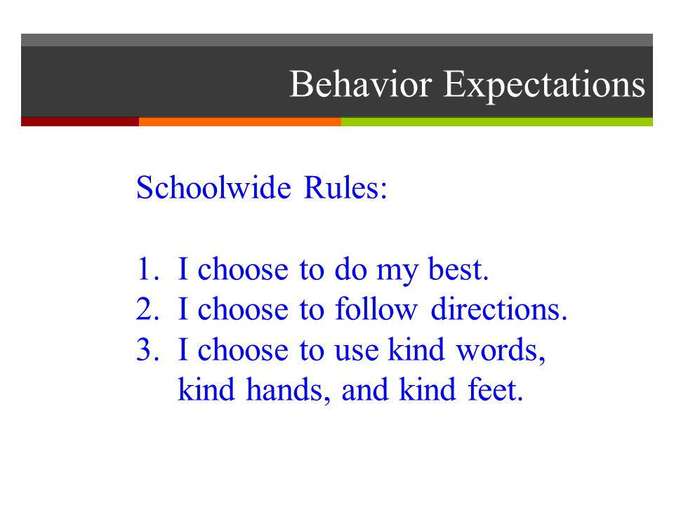 Behavior Expectations Schoolwide Rules: 1. I choose to do my best.