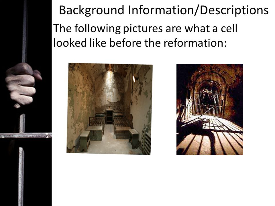 Background Information/Descriptions The following pictures are what a cell looked like before the reformation: