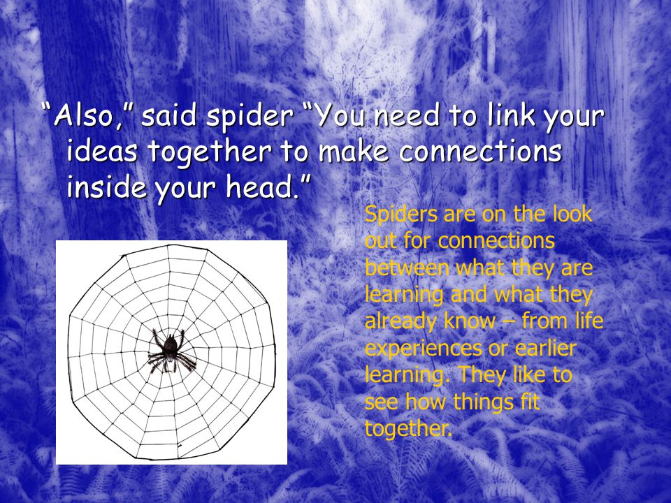 Also, said spider You need to link your ideas together to make connections inside your head. Spiders are on the look out for connections between what they are learning and what they already know – from life experiences or earlier learning.