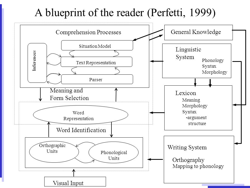 Situation models and embodied language processes franz schmalhofer 5 a blueprint of the reader perfetti 1999 visual input mapping to phonology linguistic system meaning and form selection comprehension processes malvernweather Gallery