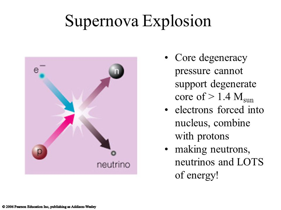 Supernova Explosion Core degeneracy pressure cannot support degenerate core of > 1.4 M sun electrons forced into nucleus, combine with protons making neutrons, neutrinos and LOTS of energy!