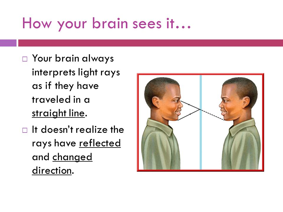How your brain sees it…  Your brain always interprets light rays as if they have traveled in a straight line.