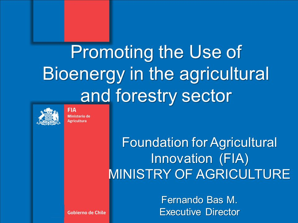Foundation for Agricultural Innovation (FIA) MINISTRY OF AGRICULTURE Fernando Bas M.