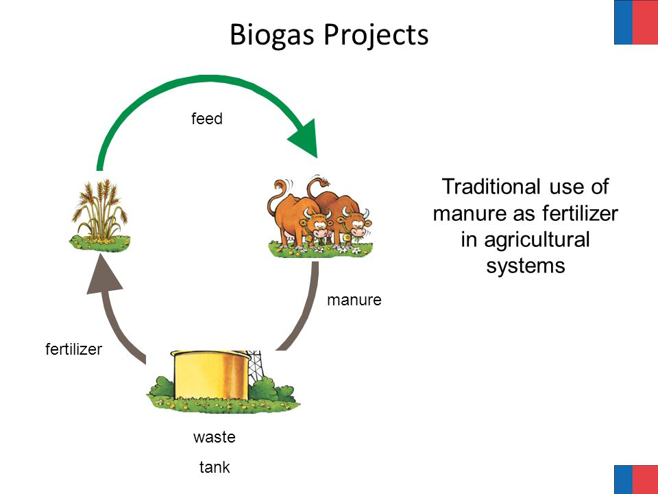 feed fertilizer manure waste tank Biogas Projects Traditional use of manure as fertilizer in agricultural systems