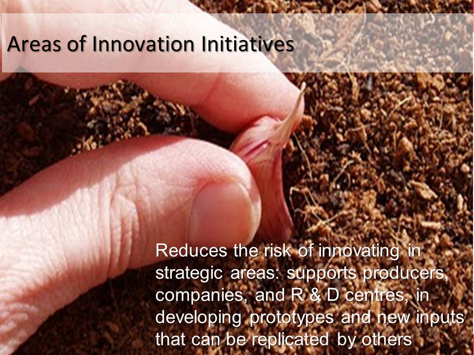 Areas of Innovation Initiatives Reduces the risk of innovating in strategic areas: supports producers, companies, and R & D centres, in developing prototypes and new inputs that can be replicated by others
