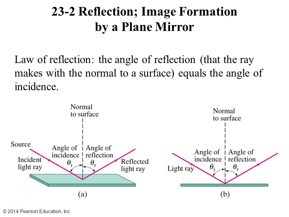 23-2 Reflection; Image Formation by a Plane Mirror Law of reflection: the angle of reflection (that the ray makes with the normal to a surface) equals the angle of incidence.