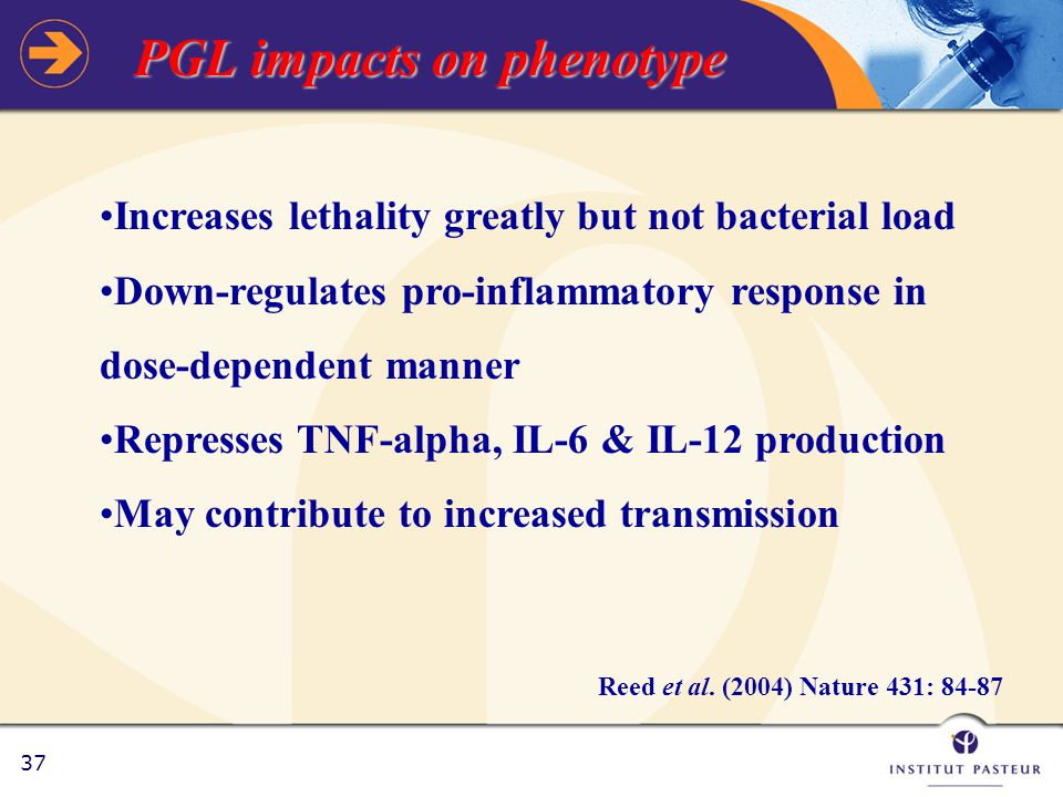 37 PGL impacts on phenotype Reed et al.