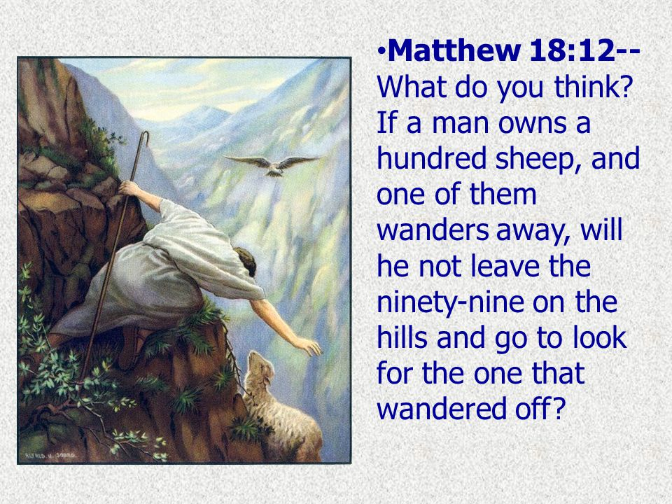 Matthew 18:12-- What do you think.