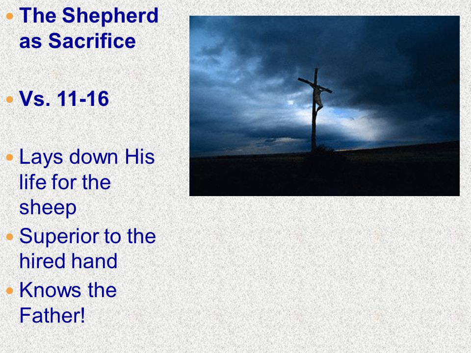 The Shepherd as Sacrifice Vs.