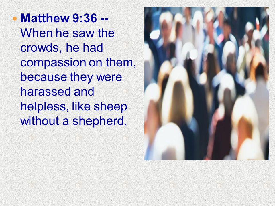 Matthew 9:36 -- When he saw the crowds, he had compassion on them, because they were harassed and helpless, like sheep without a shepherd.