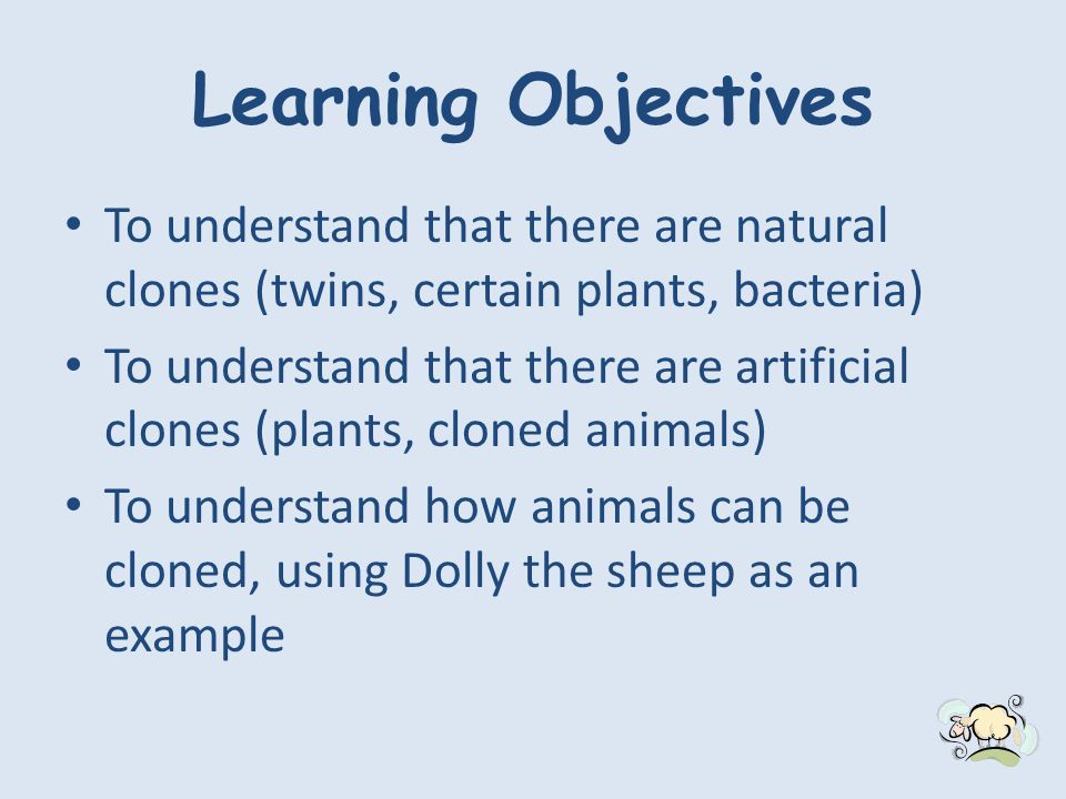 Learning Objectives To understand that there are natural clones (twins, certain plants, bacteria) To understand that there are artificial clones (plants, cloned animals) To understand how animals can be cloned, using Dolly the sheep as an example