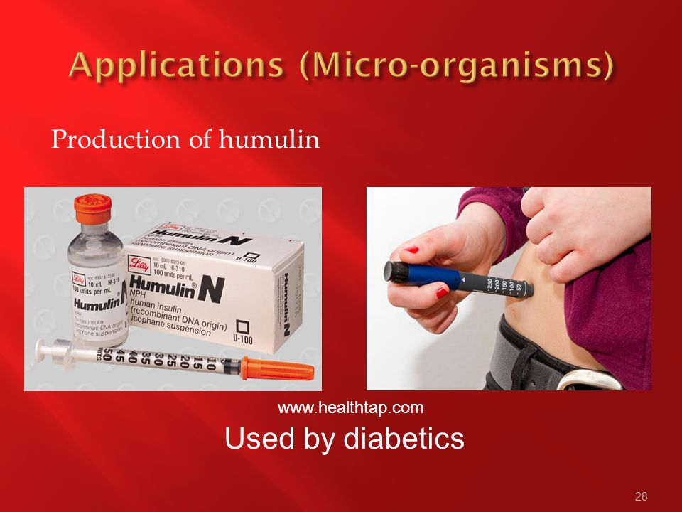 28 Production of humulin Used by diabetics