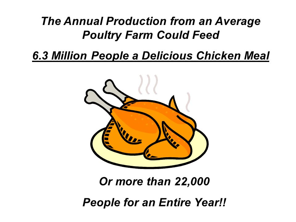 The Annual Production from an Average Poultry Farm Could Feed 6.3 Million People a Delicious Chicken Meal Or more than 22,000 People for an Entire Year!!