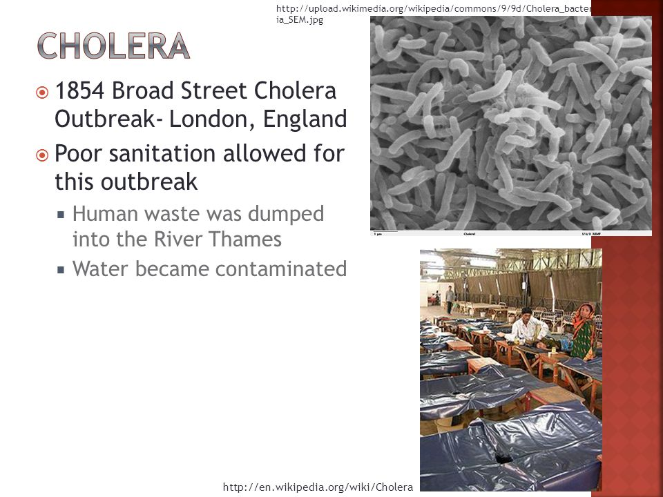  1854 Broad Street Cholera Outbreak- London, England  Poor sanitation allowed for this outbreak  Human waste was dumped into the River Thames  Water became contaminated     ia_SEM.jpg
