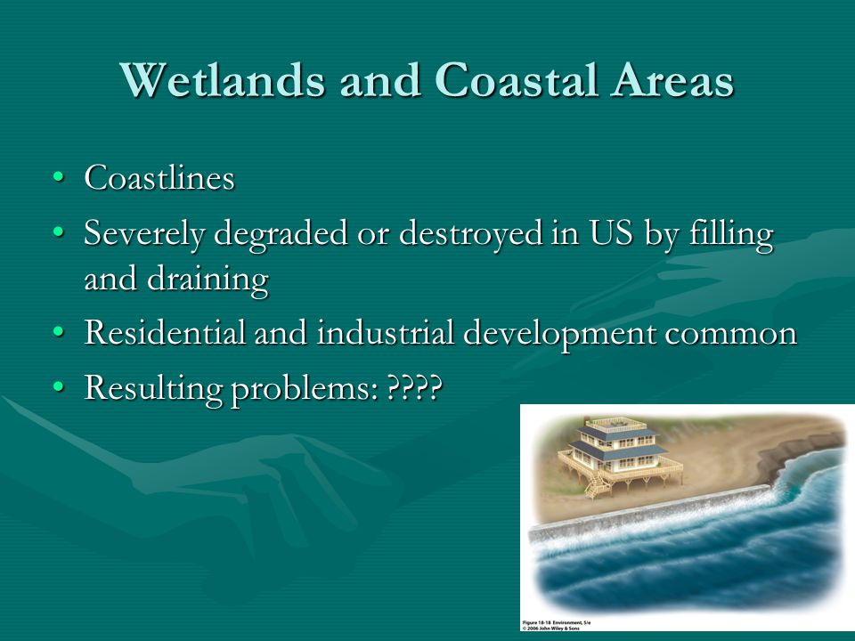 Coastlines Are being overdeveloped, highly polluted, and overfished.Are being overdeveloped, highly polluted, and overfished.