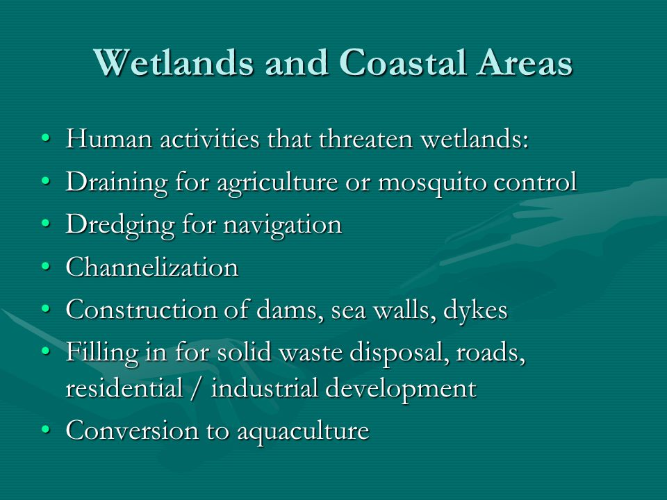 Wetlands and Coastal Areas CoastlinesCoastlines Severely degraded or destroyed in US by filling and drainingSeverely degraded or destroyed in US by filling and draining Residential and industrial development commonResidential and industrial development common Resulting problems: Resulting problems: