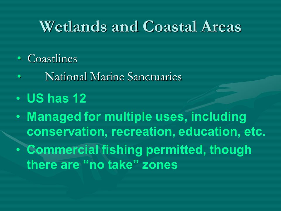 Wetlands and Coastal Areas CoastlinesCoastlines Coastal DemographicsCoastal Demographics In US, 19 of 20 most densely populated areas along coast.