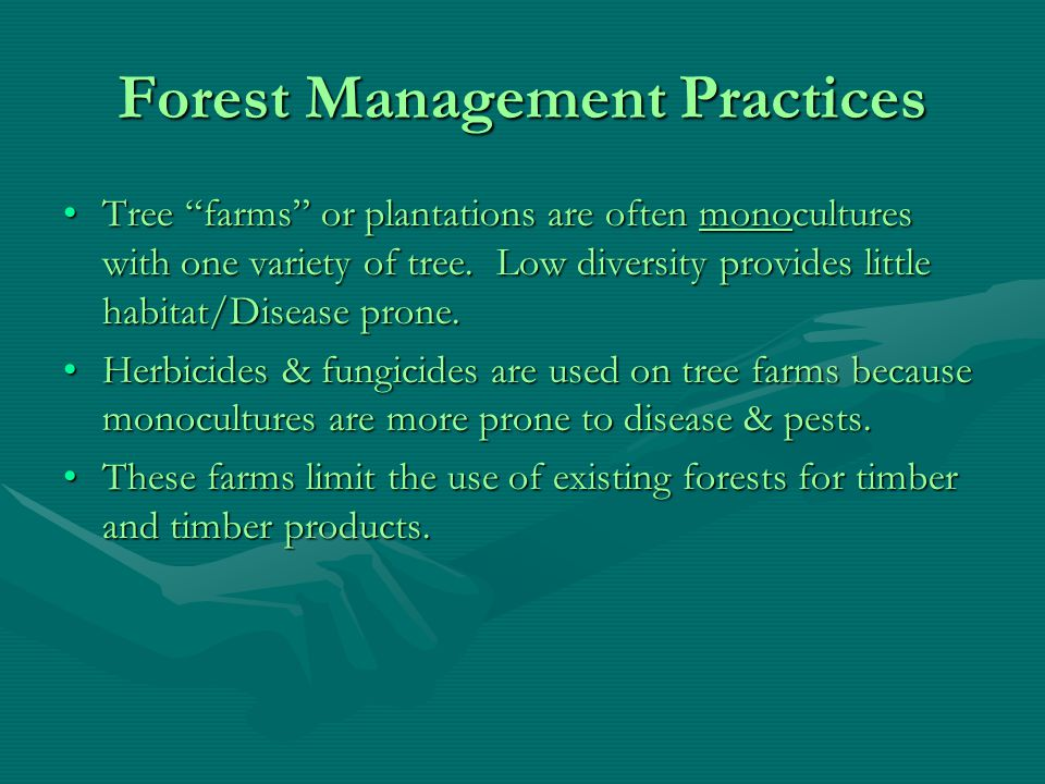 Forests Forests provide ecosystem services;Forests provide ecosystem services; They control the local climate via transpiration (natural cooling).They control the local climate via transpiration (natural cooling).