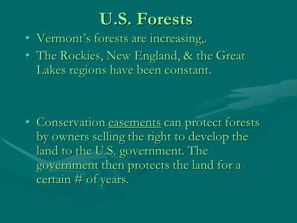 Forest Management Practices Tree farms or plantations are often monocultures with one variety of tree.